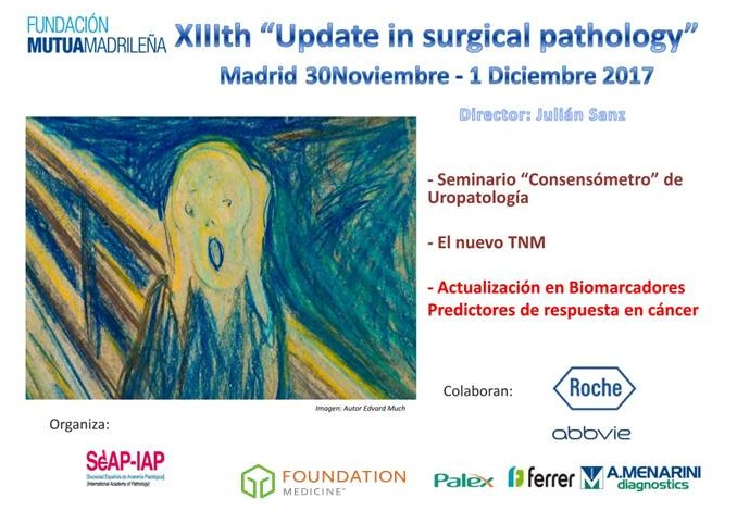 XIIIth Update in Surgical Pathology