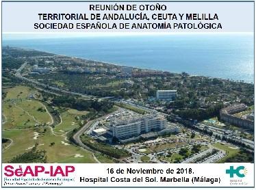 XXXVII Reunión. Marbella, Málaga, noviembre 2018. Reunión de Otoño. Asociación Territorial Andalucía, Ceuta y Melilla