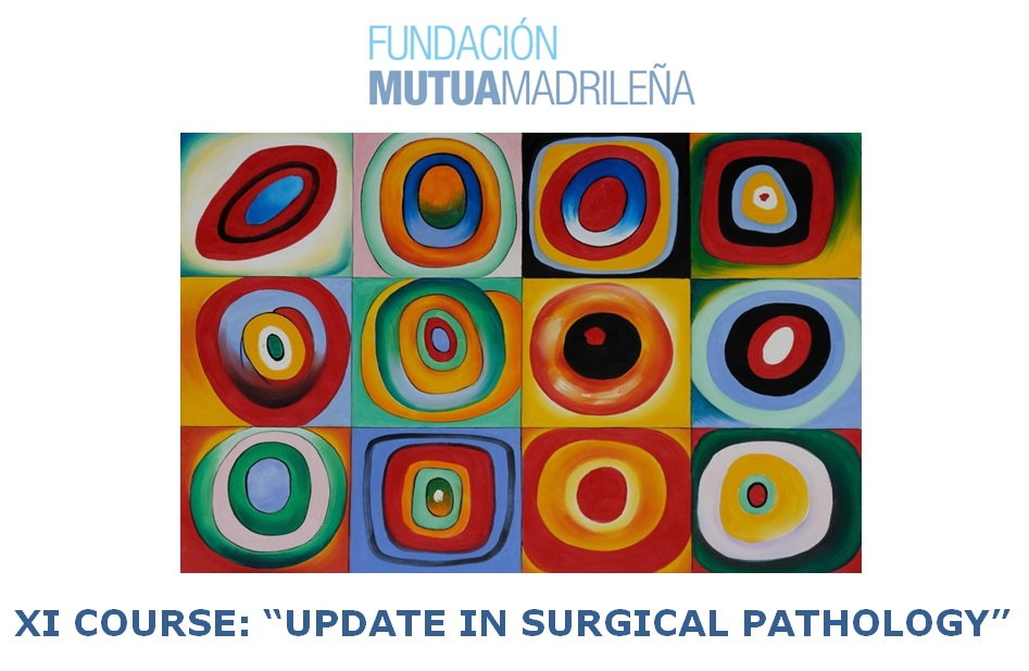 "XI COURSE: ""UPDATE IN SURGICAL PATHOLOGY"" (FUNDACIÓN MUTUA MADRILEÑA)"