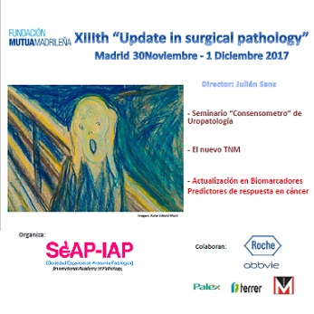 "XIIIth ""Update in surgical pathology"""