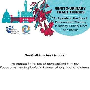 Genito-Urinay tract tumors update