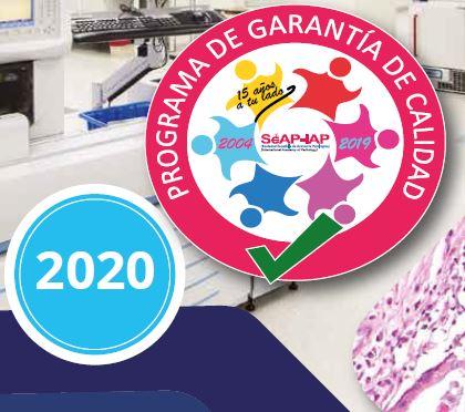 Premios XLIII Reunión Anual SEAP 2020