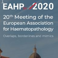 20th Meeting of the European Association for Haematopathology