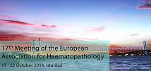 17th Meeting of the European Association for Haematopathology